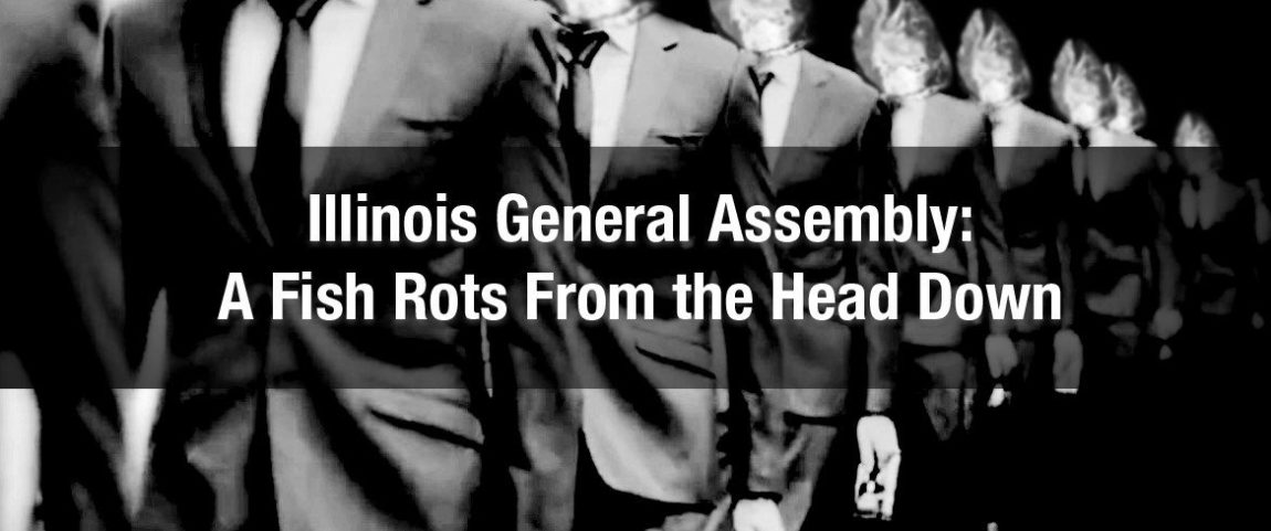 Illinois General Assembly: A Fish Rots From the Head Down